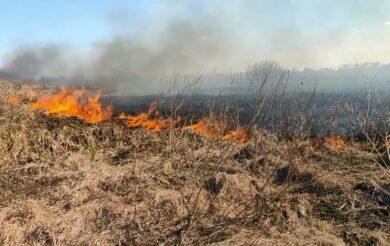 За добу на Черкащині ліквідували чотири пожежі на відкритих територіях