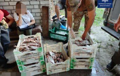 Збитки у майже два мільйони: на Черкащині викрили підпільне рибне господарство (Фото)