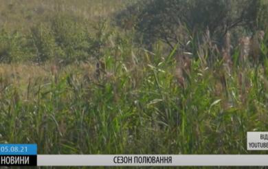 На Черкащині скоро стартує сезон полювання на пернату дичину (ВІДЕО)
