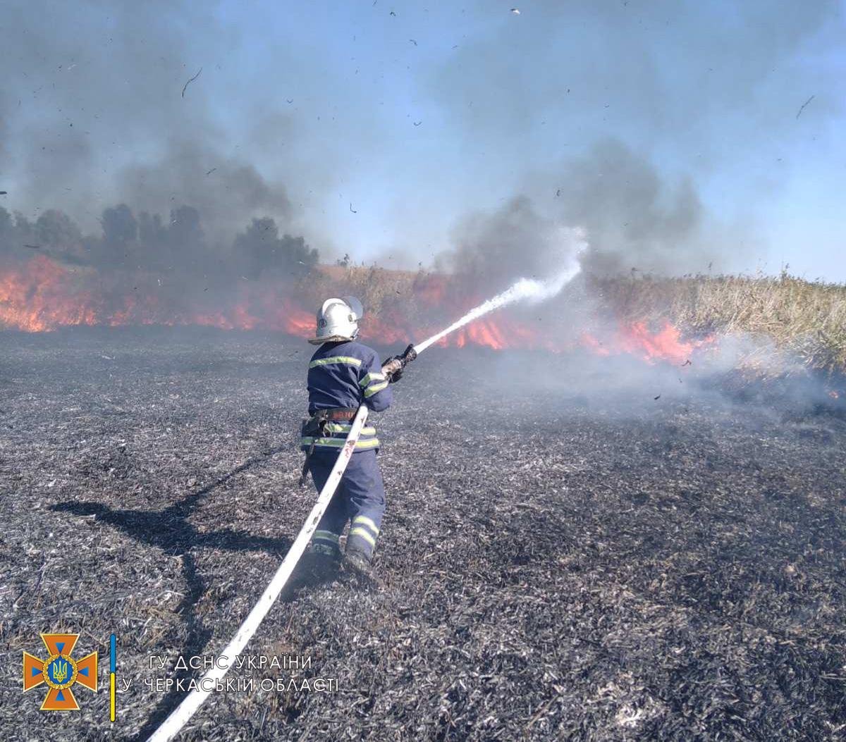 пожежа суха трава