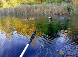 Ватутіне труп озеро