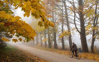 осінь хмарно