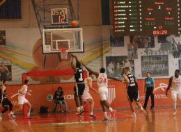 черкаські мавпи баскетбол